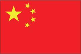 وکیل چین